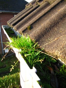 gutter-cleaning-3