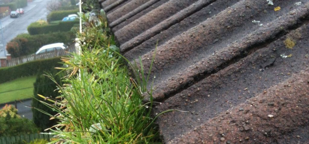 Gutter cleaning and repair in Belfast
